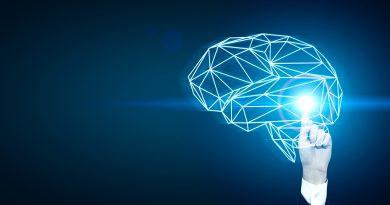 investigación y desarrollo de la inflamación cerebral