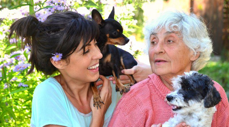 beneficios de animales de compañía para las y los adutos mayores