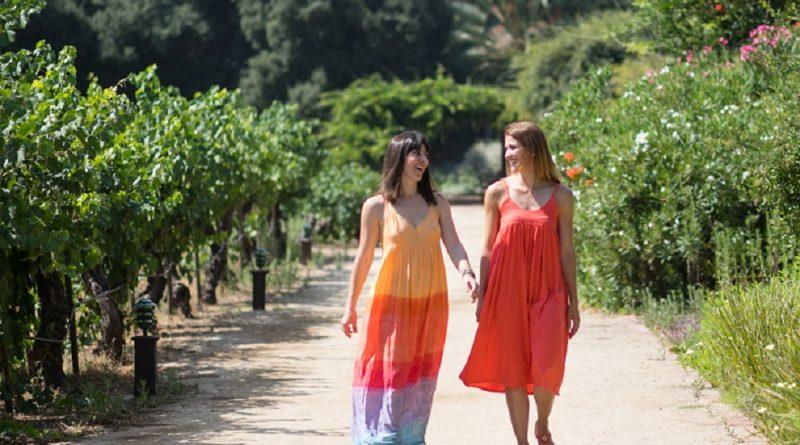 Turistas caminando por un viñedo