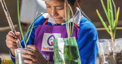 Niño sembrando una planta