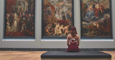 Mujer en un museo apreciando una pintura