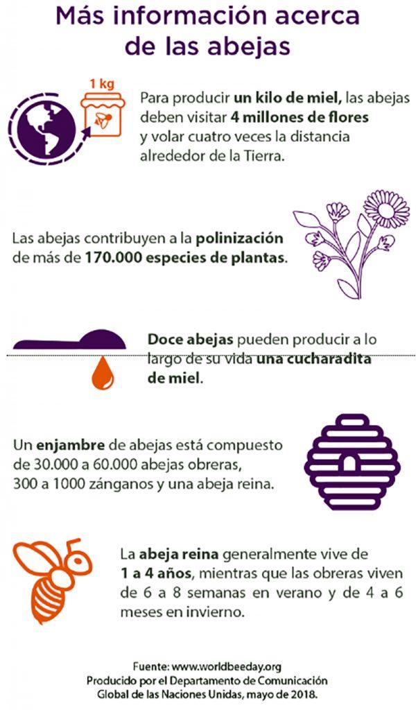 Información acerca de las abejas.