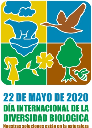 Cartel del Día Internacional de la Diversidad Biológica 2020.